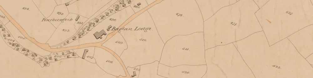 Extract from the Tithe Map of Baglan parish